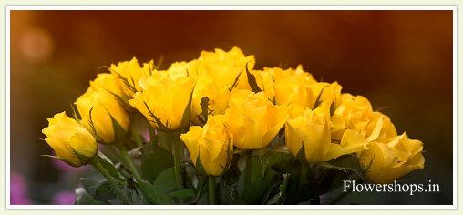 enviar flores a colombia